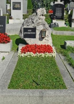 Bodendecker Von Der Friedhofsgartnerei Ehrenberger In Wien